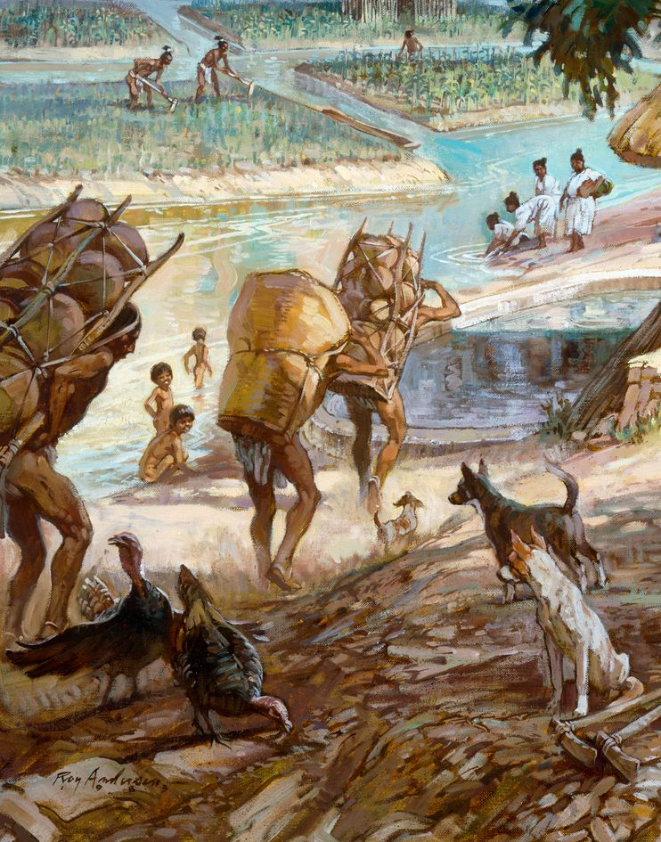 Climate Change Could Have Doomed Maya-illustration by Roy Andersen, National Geographic